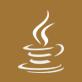 vn java logo